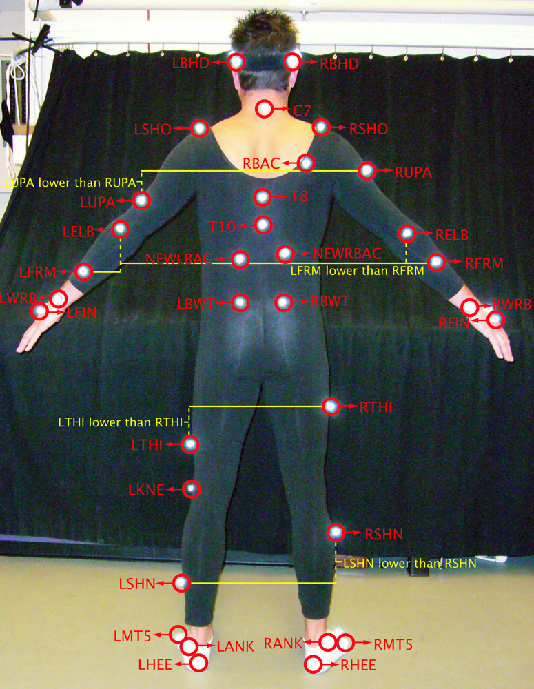 Bvh Motion Capture Library